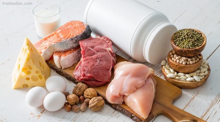 غذاهای حاوی پروتئین