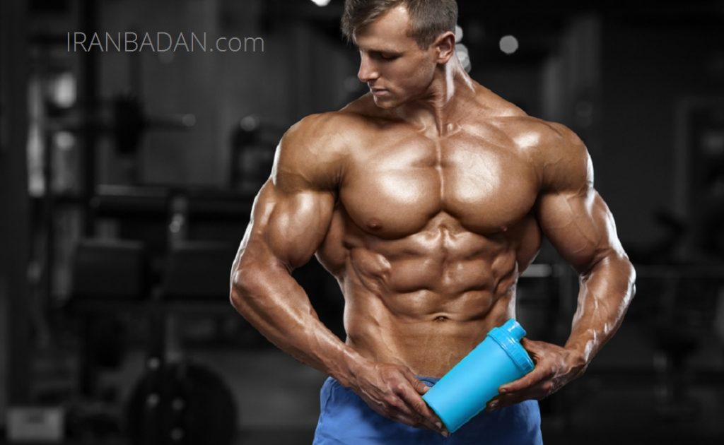 مصرف پروتئین زیاد کلیه ها را نابود می کند!؟